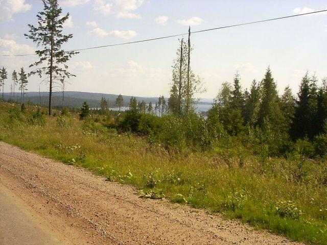 Geijersholm-tyngsjo-21
